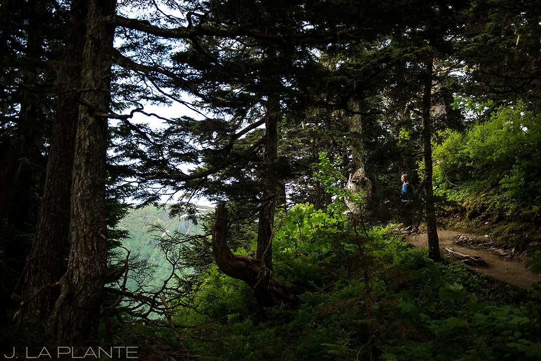 10-Juneau-Alaska-Mount-Roberts-Trail