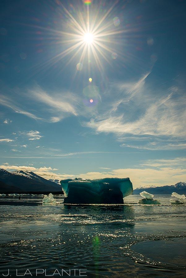 14-Juneau-Alaska-Tracy-Arm-Fjord