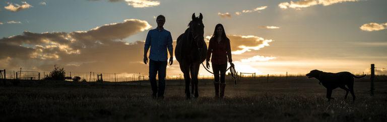 Colorado Horse Ranch Engagement