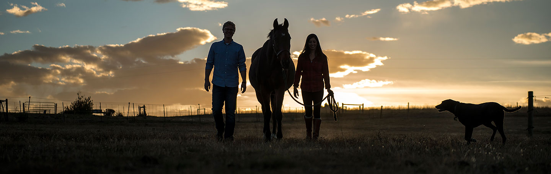 Horse engagement photos   Denver engagement photographer   J La Plante Photo