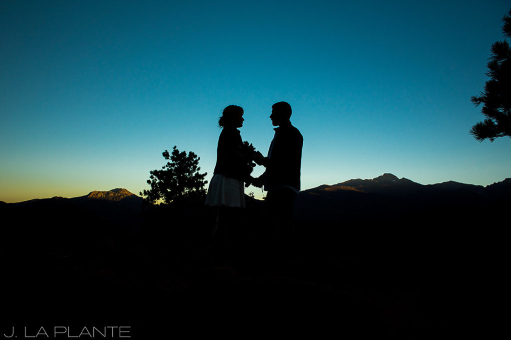 silhouette photo of bride and groom