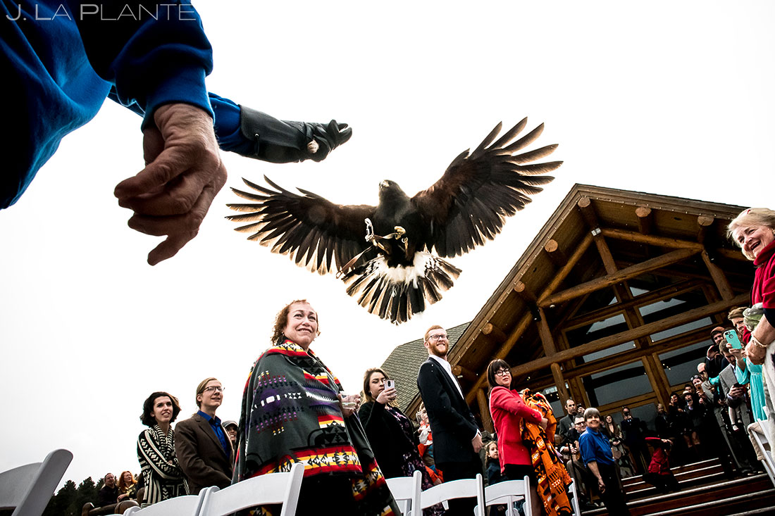 Hawk ring bearer | Evergreen Lake House Wedding | Evergreen Wedding Photographer | J. La Plante Photo