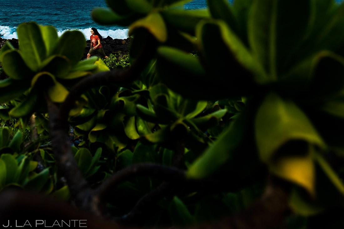 cool beaches in kauai