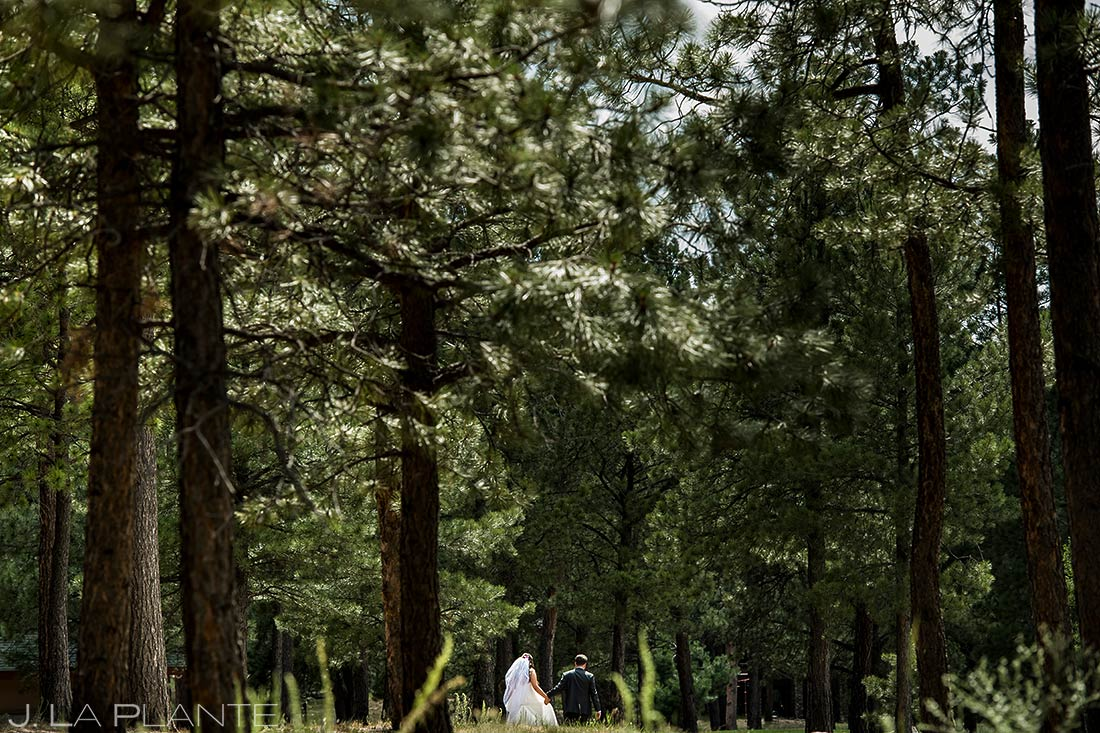 Bride and Groom Hiking Through Forest | Lodge at Cathedral Pines Wedding | Colorado Springs Wedding Photographer | J. La Plante Photo