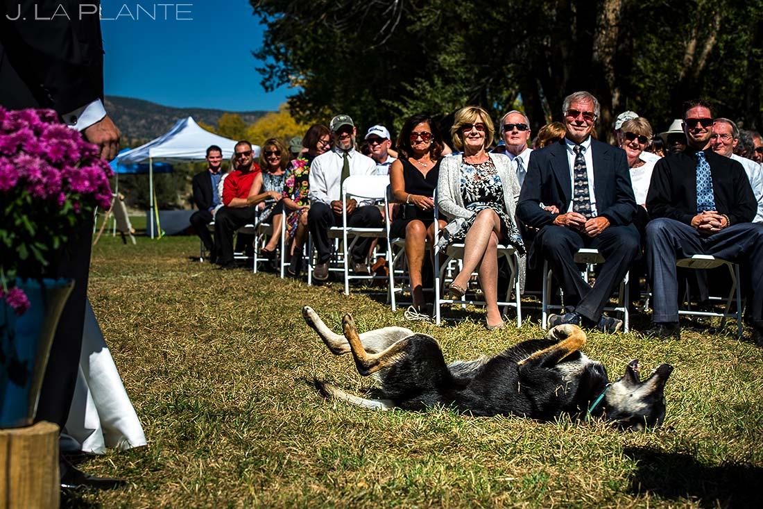 Outdoor Wedding Ceremony | Rustic Mountain Wedding | Colorado Wedding Photographer | J. La Plante Photo