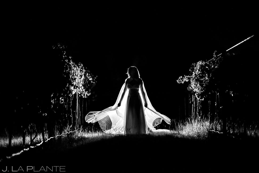 Bridal Portrait | Dallas Wedding | Destination Wedding Photographer | J. La Plante Photo