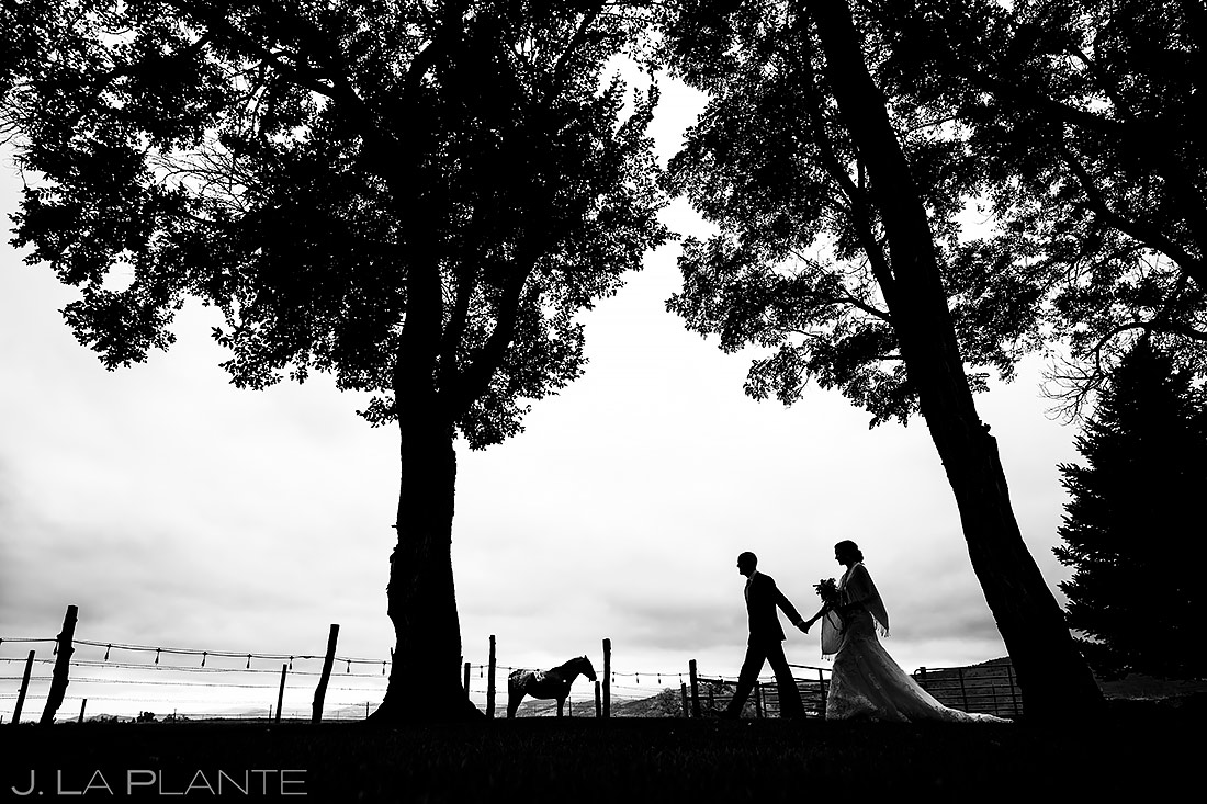 Bride and Groom with Horse   Shupe Homestead Wedding   Boulder Wedding Photographer   J. La Plante Photo