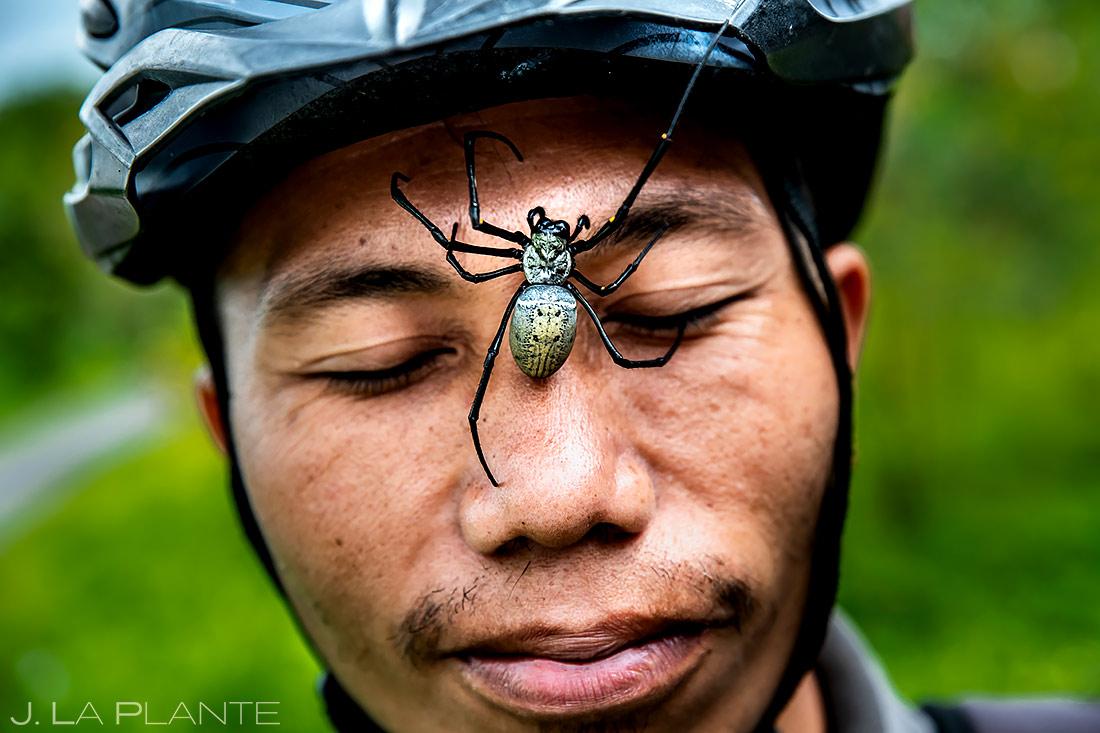 Golden Orb Spider | Bali Indonesia | Travel Photography | J. La Plante Photo