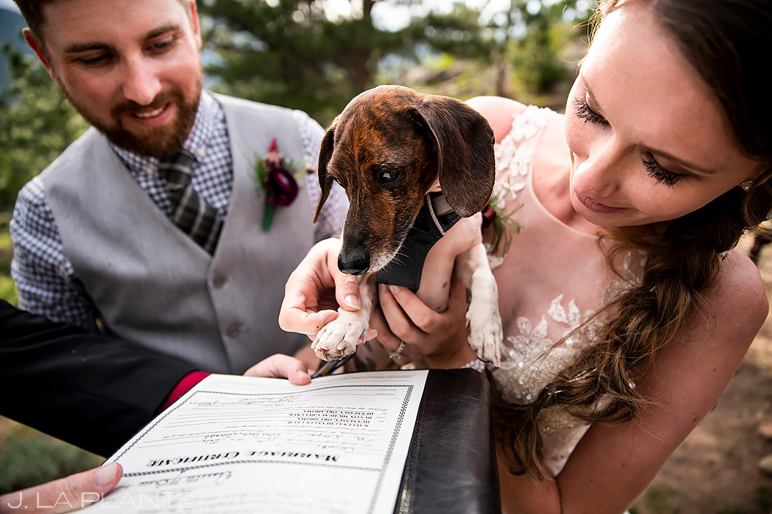 Dog Signing Marriage License with Paw | 3M Curve Wedding | Rocky Mountain National Park Wedding Photographer | J. La Plante Photo
