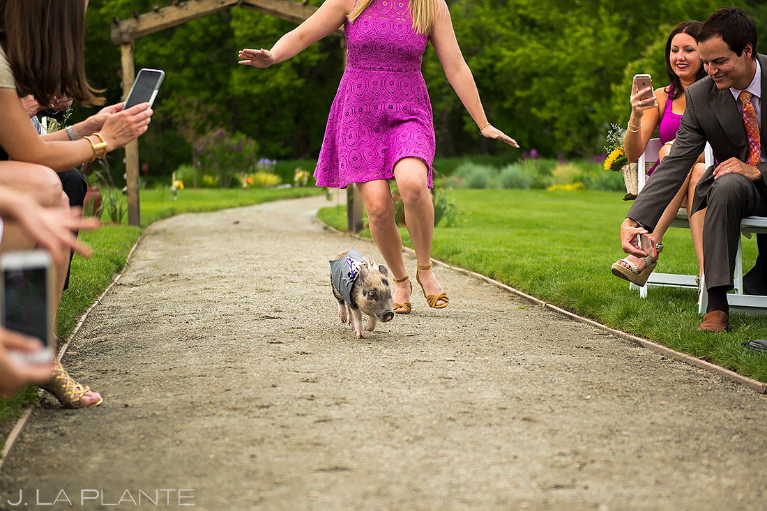 how to include your pets in your wedding | Chatfield Botanic Gardens Wedding | Denver Wedding Photographer | J. La Plante Photo