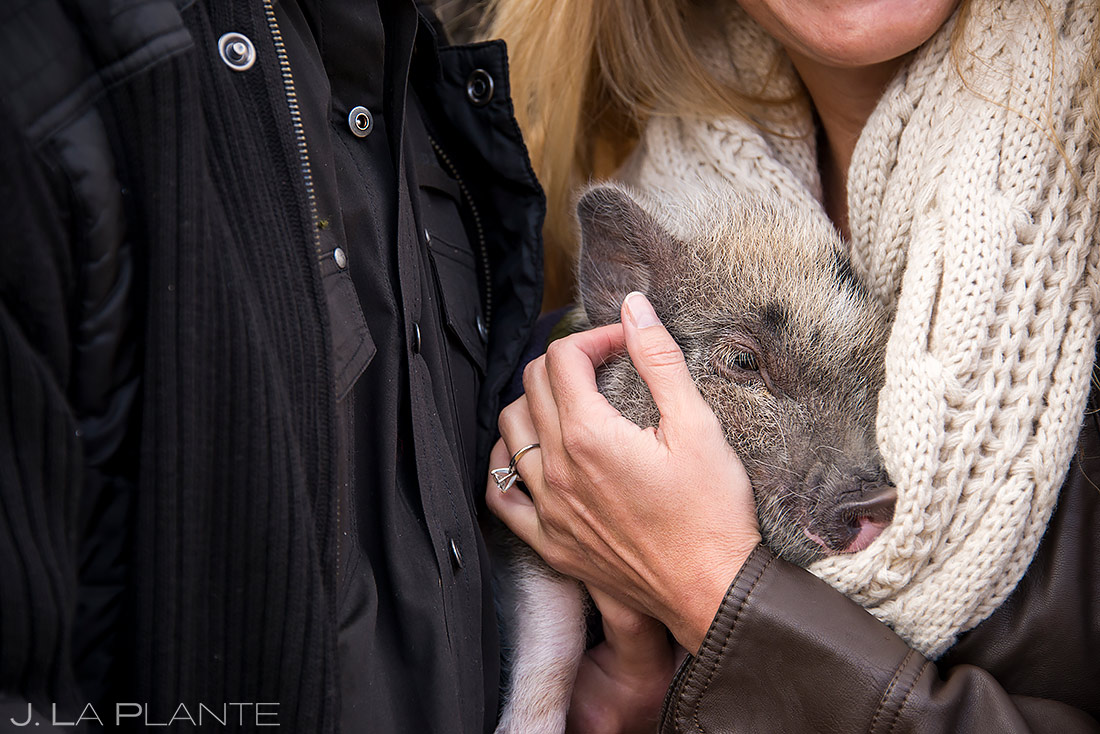Bride and Groom with Pet Pig | Golden Colorado Engagement | Golden Wedding Photographer | J. La Plante Photo