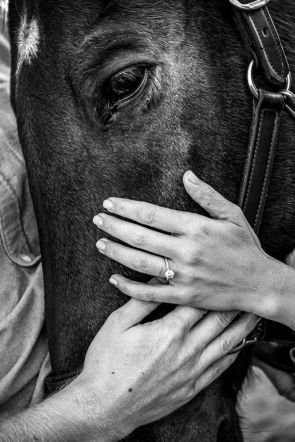engagement photo session with a horse
