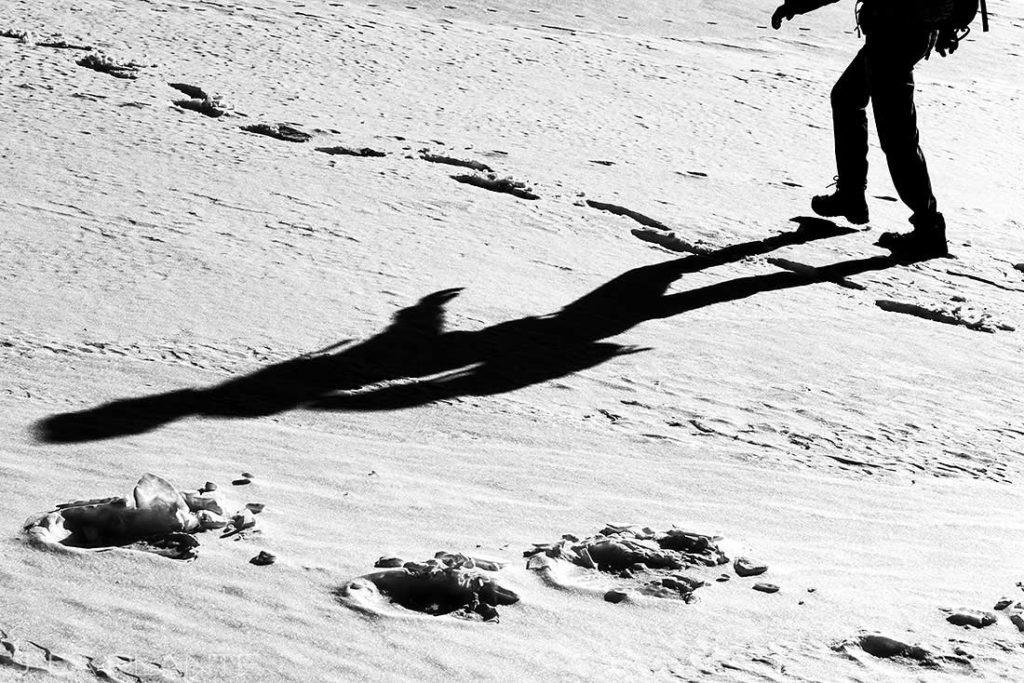 black and white photo at Hoosier Ridge engagement