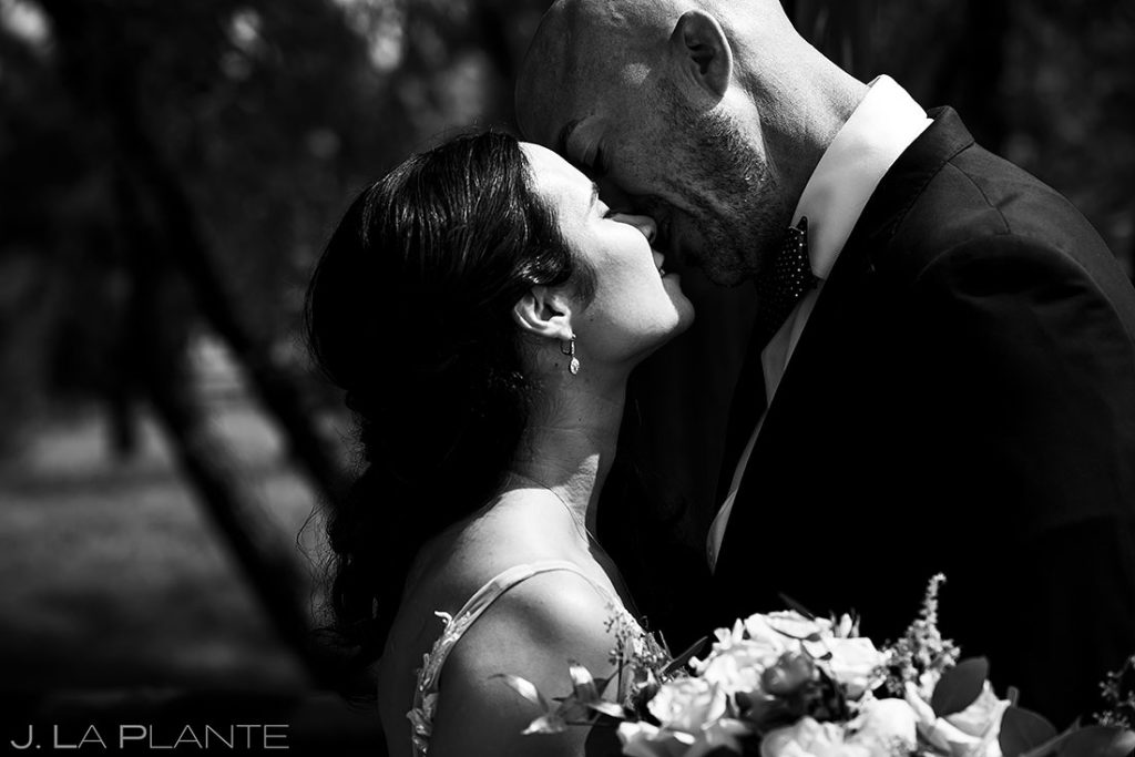 portrait of bride and groom at Spruce Mountain Lower Ranch wedding