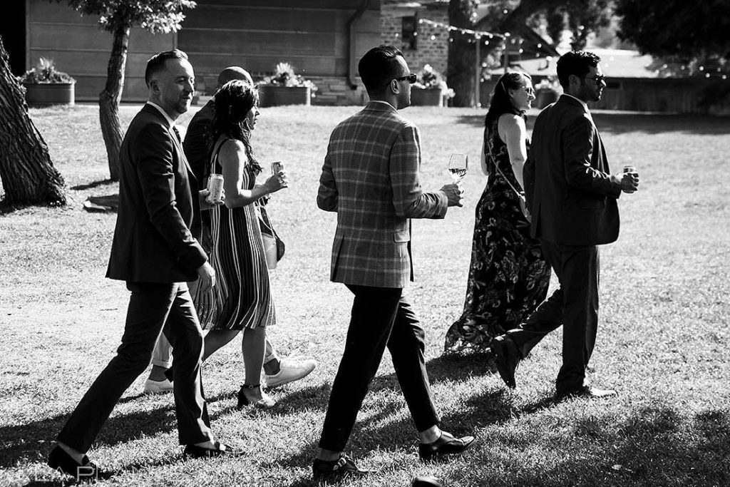 wedding guests at summer wedding at Planet Bluegrass